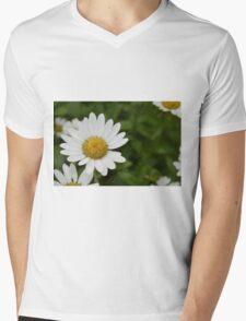 White Daisy Mens V-Neck T-Shirt