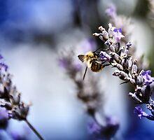 Purple worker by Mike Higgins