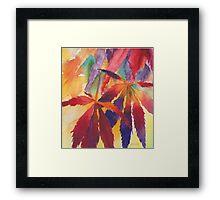 Splash of Autumn Color! Framed Print