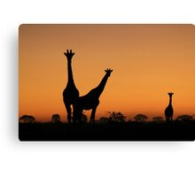 Giraffe Silhouette - African Wildlife Background - Grace and Elegance Canvas Print
