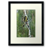 Spin Me A Story Framed Print