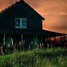 Hollowell's Cottage Nags Head,NC. by Susan Ringler