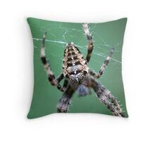 Spider in the Garden Throw Pillow