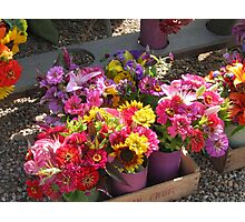 flowers from the vineyard Photographic Print