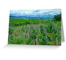Lupine Valley Greeting Card