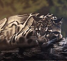 CLOUDED LEOPARD by carss66