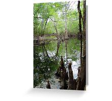 Hidden creek Greeting Card