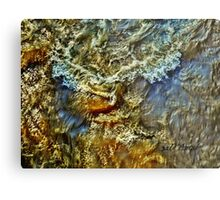 Roaring Fork River Run-Off  Metal Print