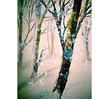 A Pale Winter Evening.... Photographic Print