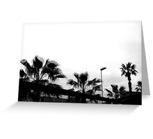 Palms in Barcelona Greeting Card