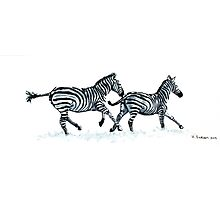 Running Zebras Photographic Print