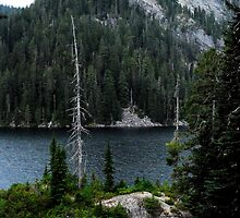 A  HIGH MOUNTAIN LAKE IN THE CASCADES by Michael Beers