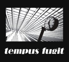Tempus Fugit by Rob Hawkins