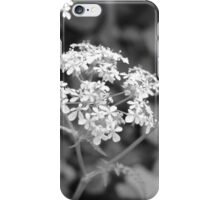 Cow parsley…probably! iPhone Case/Skin
