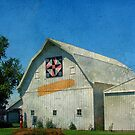 Rural Iowa Barn by angelandspot