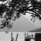 Ferry Stop on Lagi di Como by pinky763