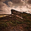 The Roaches by Julie-anne Cooke Photography