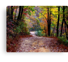 Autumn Colors Deep Within The Wilderness Country Road Canvas Print