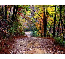 Autumn Colors Deep Within The Wilderness Country Road Photographic Print