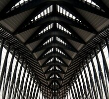 Symmetry, Lyon Airport, France by Andrew Jones