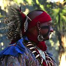 Seminole Warrior by David Lee Thompson