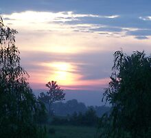 willow sunrise by debkauble