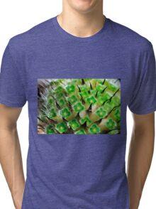 flower macro, Scabiosa Caucasia Tri-blend T-Shirt