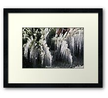 Sprinklers and Freezing Temps Framed Print