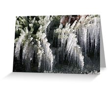 Sprinklers and Freezing Temps Greeting Card