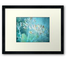The Quiet Framed Print