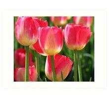 Plugged In Tulips Art Print