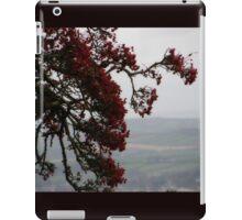 Berryland  Derry Ireland iPad Case/Skin