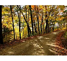 Autumn Shady Lane Photographic Print