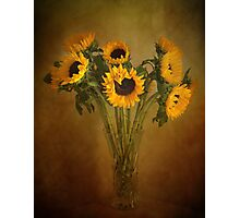 Sun Flowers in a Vase . Photographic Print