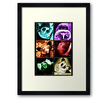 Colourful Critters Framed Print