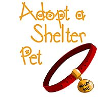 Adopt a Shelter Pet Photographic Print