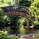 Stream running under Bridge, Lancashire, by Sandra Cockayne