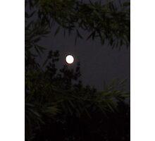 Moon Challenger Photographic Print