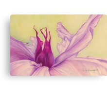 Abstract Peony Canvas Print