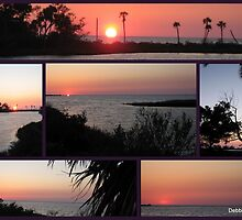 Sun sets into the Gulf of Mexico by Debbie Robbins