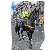 Police Horse Poster