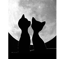 Togetherness 2 Photographic Print