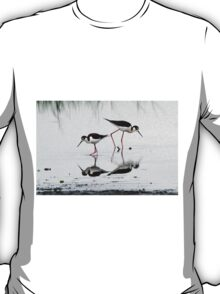 Black necked Stilts with reflection(My reflection is better than yours!) T-Shirt