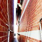 Long narrow Laneway by EdsMum