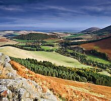 The College Valley, Northumberland. UK by David Lewins
