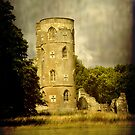 Gothic Tower at Wimpole by Karen  Betts
