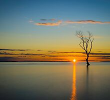 Beachmere Solitude Sunrise by Adrian Alford Photography