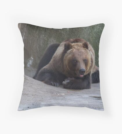 Kodiak Bear Throw Pillow