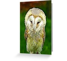 Fractalius Barn Owl Greeting Card