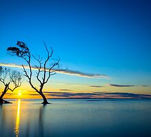 Silhouette Sunrise by Adrian Alford Photography